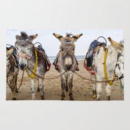 Donkeys Rug
