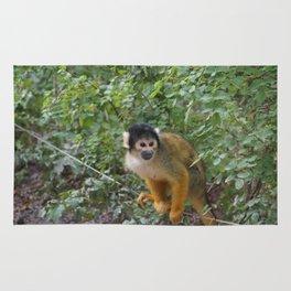 A friendly monkey Rug
