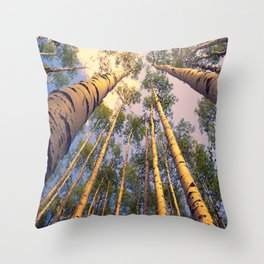 Aspen Trees Against Sky Throw Pillow