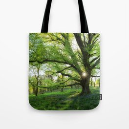To Swing On The Tree Of Hope Tote Bag