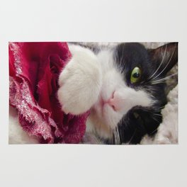 Orazio very sweet cat Rug