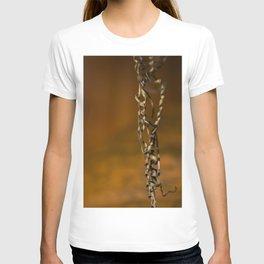 Pumpkin Vine T-shirt