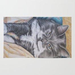 Cat: Babs Rug
