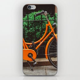 Brooklyn Heights Ride iPhone Skin