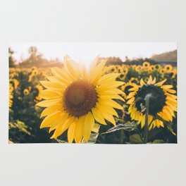 Golden Sun, III Rug