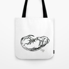 Sleeping Dachshund Tote Bag