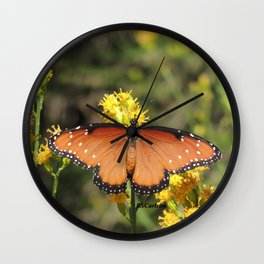 Queen Butterfly on Rubber Rabbitbrush in Claremont CA Wall Clock