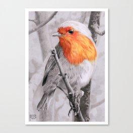 Robin SL Canvas Print
