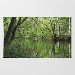 Green River of Reflection Rug