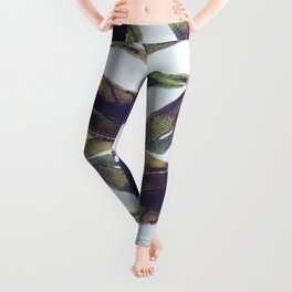 The Olive Branch Show Leggings