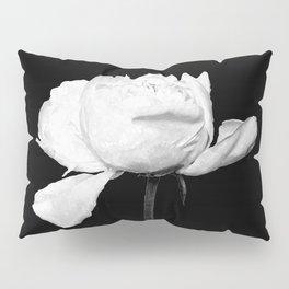 White Peony Black Background Pillow Sham