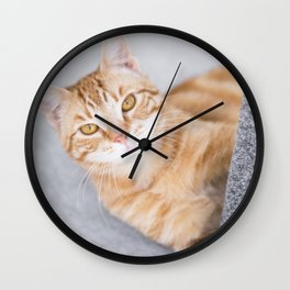 Ginger Cat Wall Clock