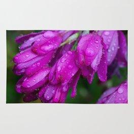 Purple Drops Rug