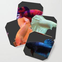 Betta Fish Galore Coaster