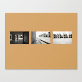 Allure in the Insipidity Canvas Print