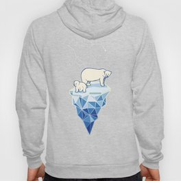 Polar bears on iceberg Hoody