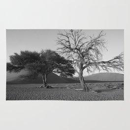 Namibia's desert Rug