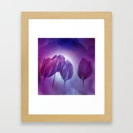 4 purple tulips on watercolor Framed Art Print