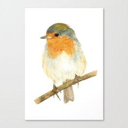 Watercolour Painting Robin Canvas Print