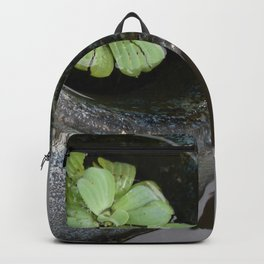 Zen Pond Backpack