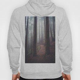 Foggy Forest Path Hoody