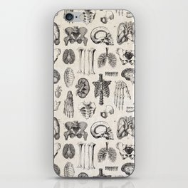 Human Anatomy iPhone Skin
