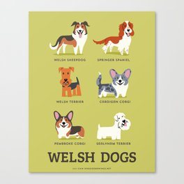 WELSH DOGS Canvas Print