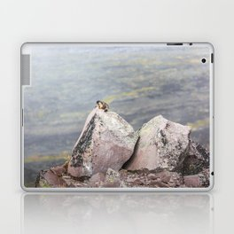 Extremal Groundhog  or King of the Mountain Laptop & iPad Skin