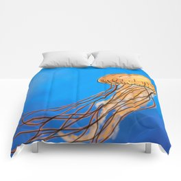 The Miraculous creature called a Jellyfish Comforters