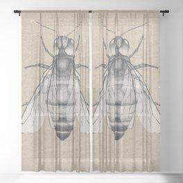 Bee pencil drawing Sheer Curtain