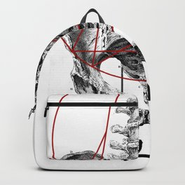 Bacino Backpack