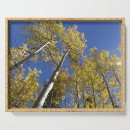 Looking Up Aspens Serving Tray