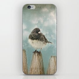 Winter bird iPhone Skin