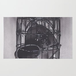 Realism Drawing of Bird Cage with Mirrors with Shadows Rug