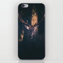Red deer lit by sunlight in dark forest. iPhone Skin