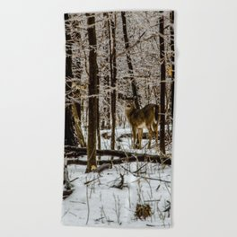 Deer in the Glistening Forest by Teresa Thompson Beach Towel