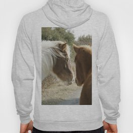 Horse Conversations Hoody