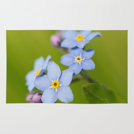 Forget-me-not Flowers On Natural Green Bokeh Background #decor #society6 #buyart Rug