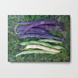 Colorful String Beans Metal Print