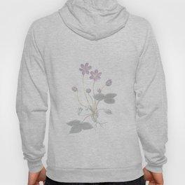pink violets Hoody