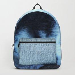 Black + White Kitten Backpack