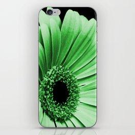 Gerbera Green iPhone Skin
