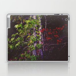 October Forest Laptop & iPad Skin