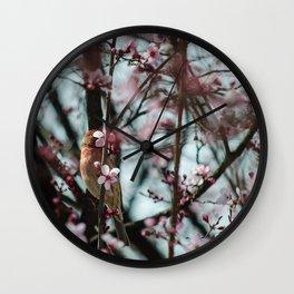 Peek-A-Boo - Spring Finch Wall Clock