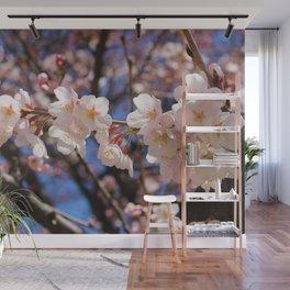 Cherry Blossom Japan Wall Mural