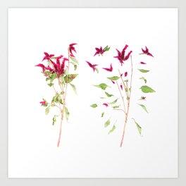 Deconstructed Flower Art Print