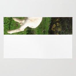 A Newborn Lamb Finding Its Feet Rug