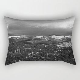 # 320 Rectangular Pillow