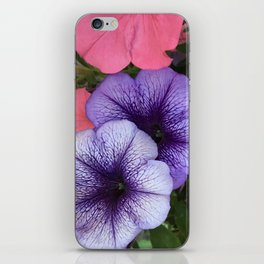 Purple Petunias iPhone Skin
