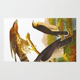 Goshawk Bird Rug